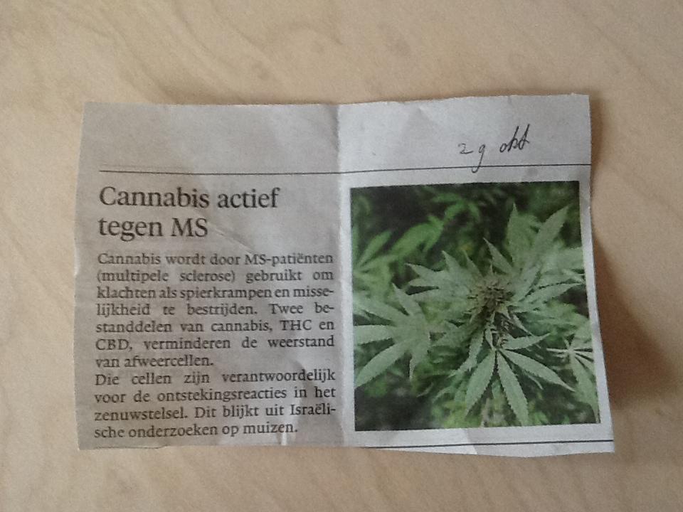 Cannabis actief tegen MS